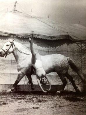 Cirque années 30 (1)
